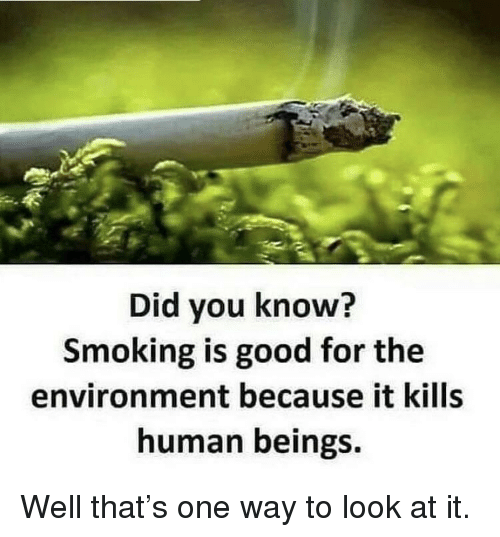 Smoking, Good, and Human: Did you know?  Smoking is good for the  environment because it kills  human beings. Well that's one way to look at it.