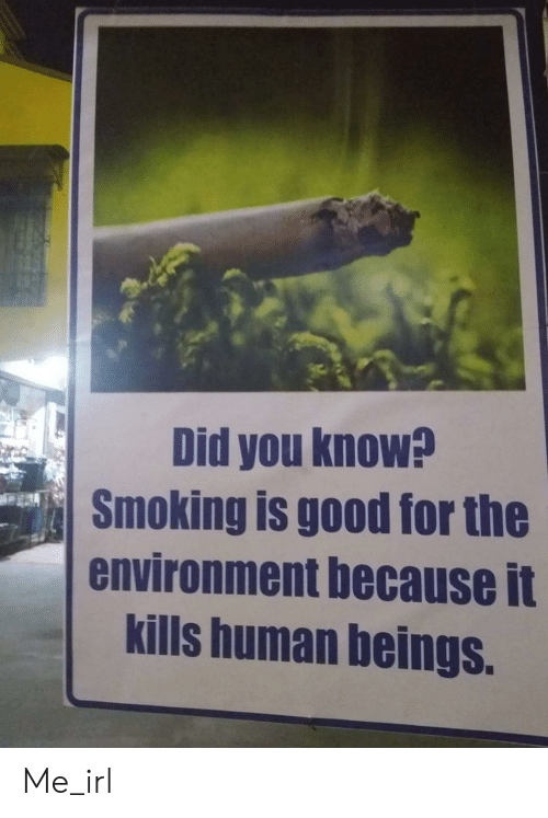 Beings: Did you know?  Smoking is good for the  environment because it  kills human beings. Me_irl