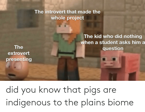 indigenous: did you know that pigs are indigenous to the plains biome