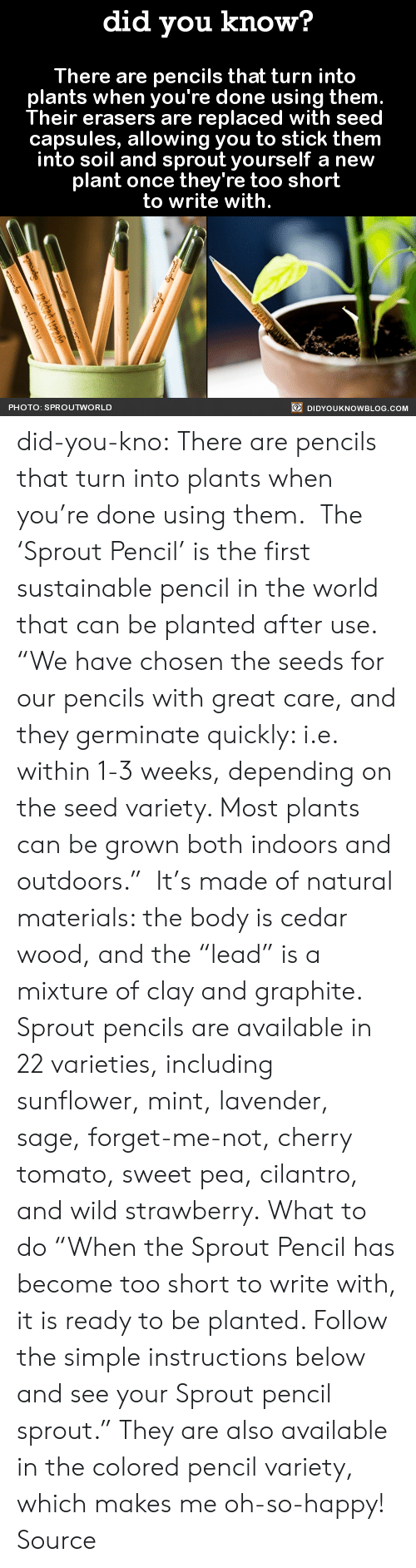 "Indoors: did you know?  There are pencils that turn into  plants when you're done using them  Their erasers are replaced with seed  capsules, allowing you to stick them  into soil and sprout yourself a new  plant once they're too short  to write with.  PHOTO: SPROUTWORLD  DIDYOUKNOWBLOG.COM did-you-kno:  There are pencils that turn into  plants when you're done using them.    The 'Sprout Pencil' is the first sustainable pencil in the world that can be planted after use.   ""We have chosen the seeds for our pencils with great care, and they germinate quickly: i.e. within 1-3 weeks, depending on the seed variety. Most plants can be grown both indoors and outdoors.""  It's made of natural materials: the body is cedar wood, and the ""lead"" is a mixture of clay and graphite. Sprout pencils are available in 22 varieties, including sunflower, mint, lavender, sage, forget-me-not, cherry tomato, sweet pea, cilantro, and wild strawberry. What to do ""When the Sprout Pencil has become too short to write with, it is ready to be planted. Follow the simple instructions below and see your Sprout pencil sprout."" They are also available in the colored pencil variety, which makes me oh-so-happy!  Source"