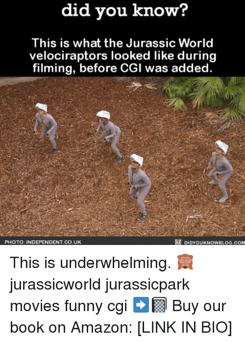 Amazon, Funny, and Jurassic World: did you know?  This is what the Jurassic World  velociraptors looked like during  filming, before CGI was added.  PHOTO: INDEPENDENT.CO.U  DIDYOUKNOWBLOG.COM This is underwhelming. 🙈 jurassicworld jurassicpark movies funny cgi ➡️📓 Buy our book on Amazon: [LINK IN BIO]