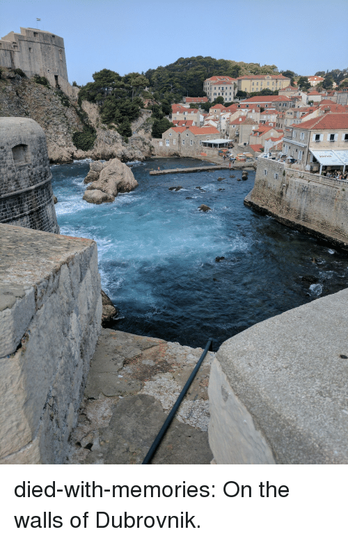 Tumblr, Blog, and Http: died-with-memories: On the walls of Dubrovnik.