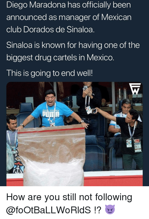 Club, Memes, and Mexico: Diego Maradona has officially been  announced as manager of Mexican  club Dorados de Sinaloa.  Sinaloa is known for having one of the  biggest drug cartels in Mexico  This is going to end well!  ORIGIM L SPOR WEAR How are you still not following @foOtBaLLWoRldS !? 😈