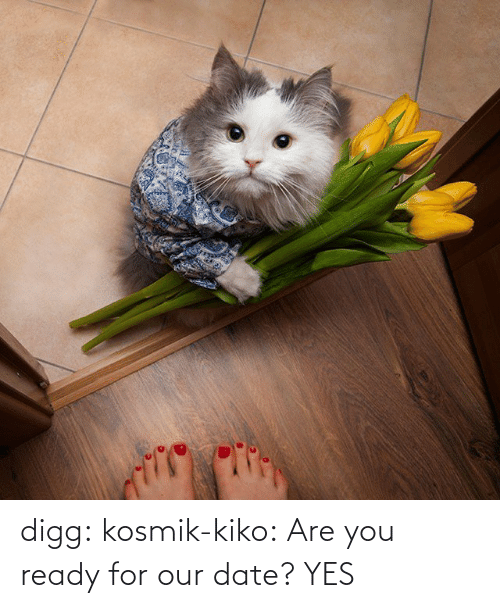 are you: digg:  kosmik-kiko:  Are you ready for our date?  YES
