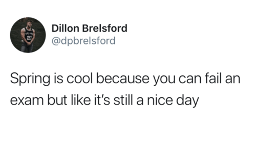 Fail, Cool, and Spring: Dillon Brelsford  @dpbrelsford  21  Spring is cool because you can fail an  exam but like it's still a nice day