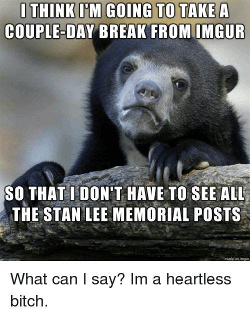 Bitch, Stan, and Stan Lee: dina TOT  COUPLE-DAY BREAK FROM IMGUR  SO THAT IDON'T HAVE TO SEE ALL  THE STAN LEE MEMORIAL POSTS  made on imgur What can I say? Im a heartless bitch.