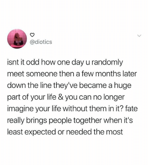 Isnt It: @diotics  isnt it odd how one day u randomly  meet someone then a few months later  down the line they've became a huge  part of your life & you can no longer  imagine your life without them in it? fate  really brings people together when it's  least expected or needed the most