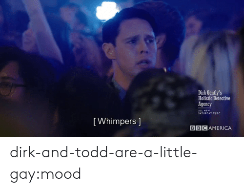 Mood, Target, and Tumblr: Dirk Gently's  Holistic Detective  Agency  ALL NEW  SATURDAY 9/8C  [ Whimpers 1  BBCAMERICA dirk-and-todd-are-a-little-gay:mood