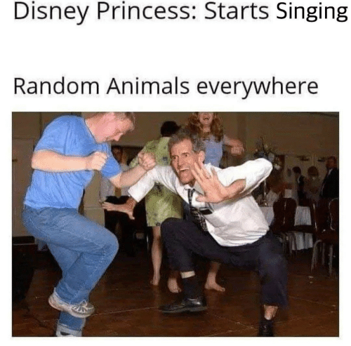 Animals, Disney, and Singing: Disney Princess: Starts Singing  Random Animals everywhere
