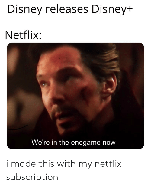 endgame: Disney releases Disney+  Netflix:  We're in the endgame now i made this with my netflix subscription