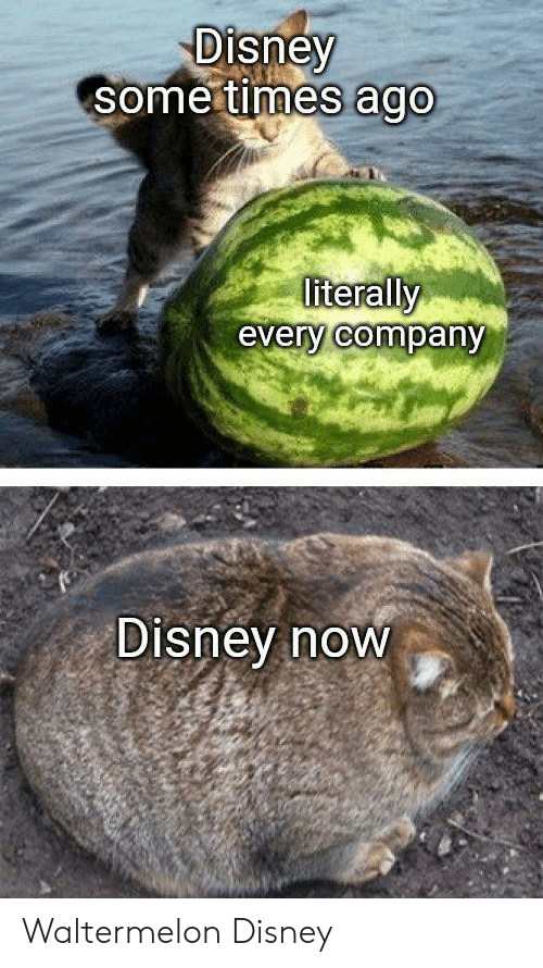 Disney, Company, and Now: Disney  some times ago  literally  every company  Disney now Waltermelon Disney