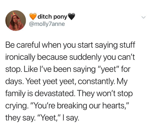 "Crying, Family, and Hearts: ditch pony  @molly7anne  Be careful when you start saying stuff  ironically because suddenly you can't  stop. Like I've been saying ""yeet"" for  days. Yeet yeet yeet, constantly. My  family is devastated. They won't stop  crying. ""You're breaking our hearts,""  they say. ""Yeet,"" I say"