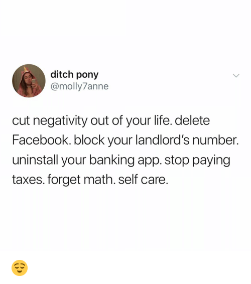 Facebook, Life, and Taxes: ditch pony  @molly7anne  cut negativity out of your life. delete  Facebook. block your landlord's number.  uninstall your banking app. stop paying  taxes. forget math. self care 😌