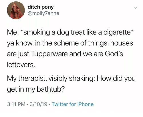 how-did-you: ditch pony  @molly7anne  Me: *smoking a dog treat like a cigarette*  ya know. in the scheme of things. houses  are just Tupperware and we are God's  leftovers.  My therapist, visibly shaking: How did you  get in my bathtub?  3:11 PM 3/10/19 Twitter for iPhone