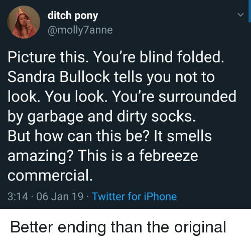 It Smells: ditch pony  @molly7anne  Picture this, You're blind foldeg  Sandra Bullock tells you not to  ook, You look. You're surrounded  by garbage and dirty socks  But how can this be? It smells  amazing? This is a febreeze  commercia  3:14 06 Jan 19 Twitter for iPhone Better ending than the original