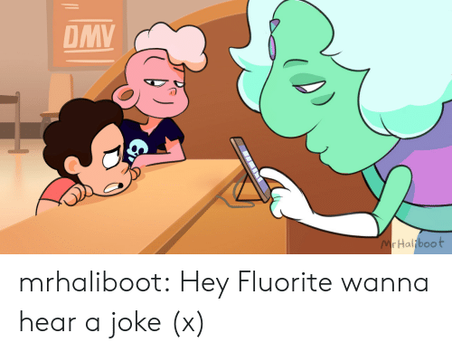 Dmv, Tumblr, and youtube.com: DMV  MrHaliboot mrhaliboot: Hey Fluorite wanna hear a joke (x)