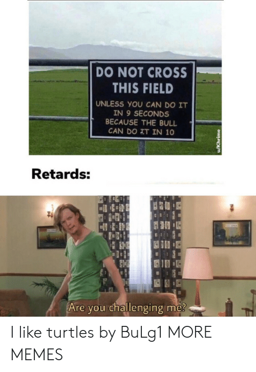 bull: DO NOT CROSS  THIS FIELD  UNLESS YOU CAN DO IT  IN 9 SECONDS  BECAUSE THE BULL  CAN DO IT IN 10  Retards:  Are you challenging me?  u/Khrime I like turtles by BuLg1 MORE MEMES