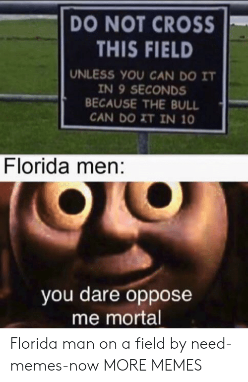 bull: DO NOT CROSS  THIS FIELD  UNLESS YOU CAN DO IT  IN 9 SECONDS  BECAUSE THE BULL  CAN DO XT IN 10  Florida men:  you dare oppose  me mortal Florida man on a field by need-memes-now MORE MEMES