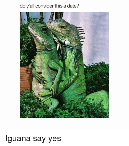 Memes, Date, and 🤖: do y'all consider this a date? Iguana say yes