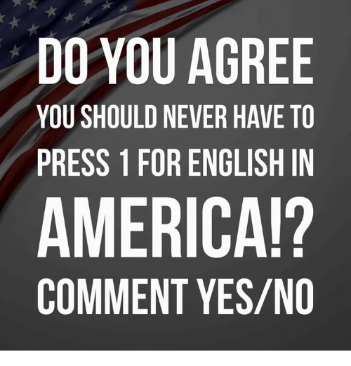America, Memes, and English: DO YOU AGREE  YOU SHOULD NEVER HAVE TO  PRESS 1 FOR ENGLISH IN  AMERICA!?  COMMENT YES/NO