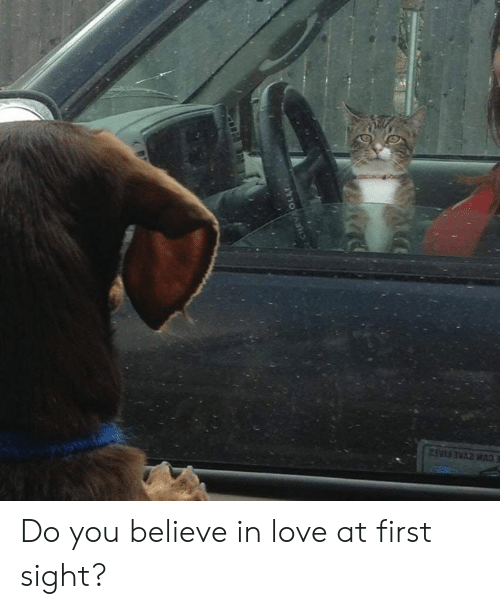 At First Sight: Do you believe in love at first sight?