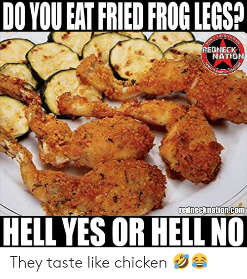 Memes, Chicken, and Hell: DO YOU EAT FRIED FROG LEGSA  TREAD  EDNECK  NATIO  rednecknation.com  HELL YES OR HELL NO They taste like chicken 🤣😂