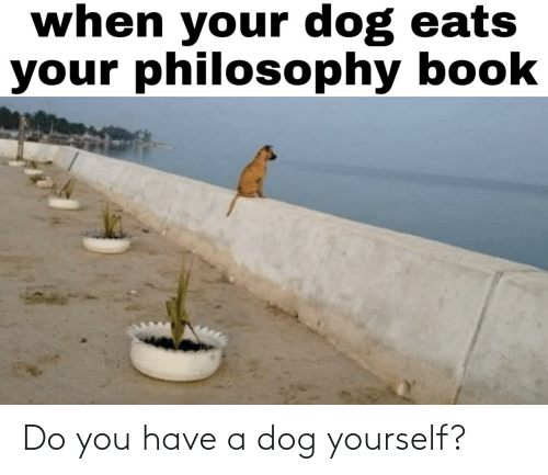 A Dog: Do you have a dog yourself?