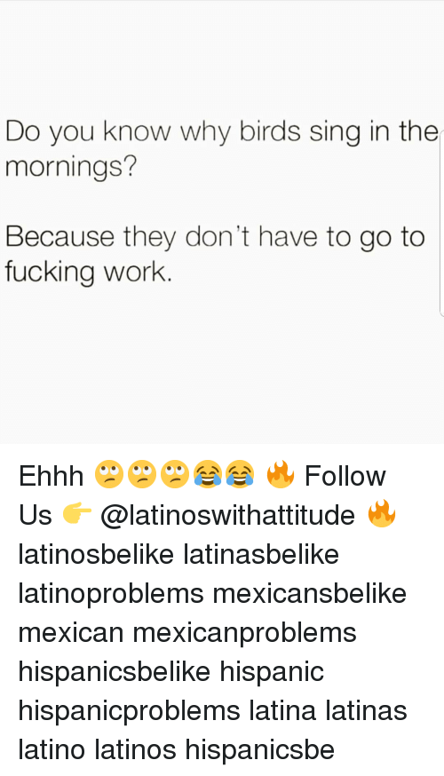 Fucking, Latinos, and Memes: Do you know why birds sing in the  mornings?  Because they don't have to go to  fucking work. Ehhh 🙄🙄🙄😂😂 🔥 Follow Us 👉 @latinoswithattitude 🔥 latinosbelike latinasbelike latinoproblems mexicansbelike mexican mexicanproblems hispanicsbelike hispanic hispanicproblems latina latinas latino latinos hispanicsbe