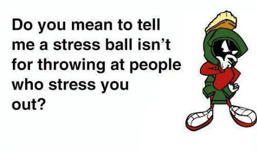 You Mean To Tell Me: Do you mean to tell  me a stress ball isn't  for throwing at people  who stress you  out?