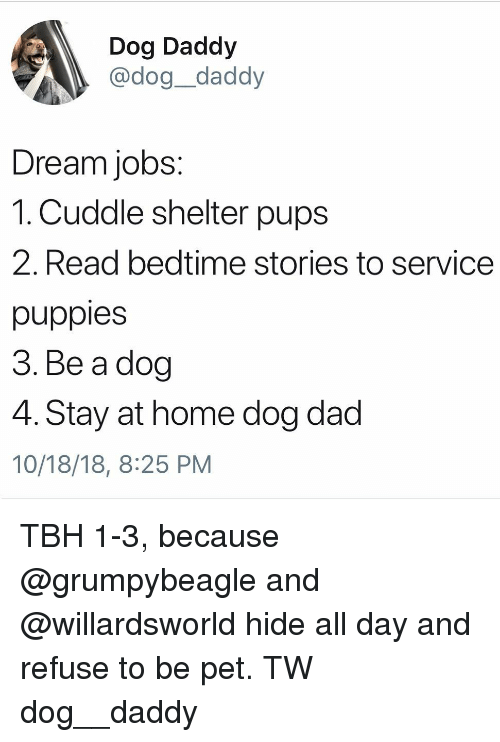 Dad, Memes, and Puppies: Dog Daddy  , @dog_daddy  Dream jobs:  1. Cuddle shelter pups  2. Read bedtime stories to service  puppies  3. Be a dog  4. Stay at home dog dad  10/18/18, 8:25 PM TBH 1-3, because @grumpybeagle and @willardsworld hide all day and refuse to be pet. TW dog__daddy