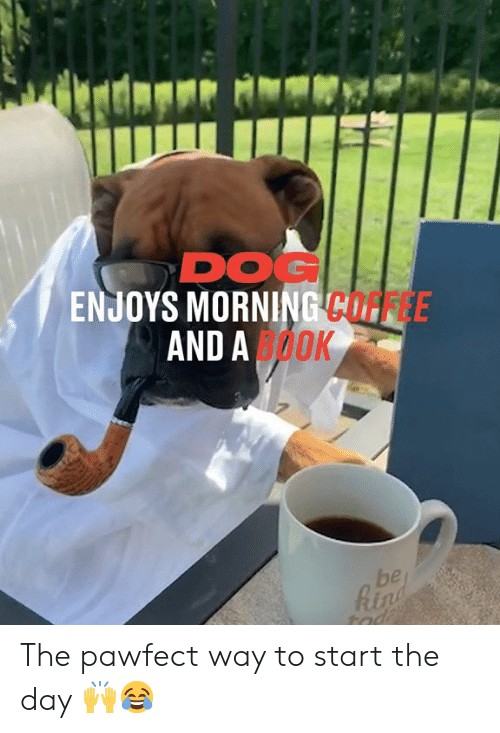 Dank, Coffee, and 🤖: DOG  ENJOYS MORNING COFFEE  AND AOOK  be  Rin  tad The pawfect way to start the day 🙌😂
