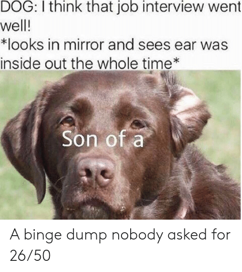 inside out: DOG: I think that job interview went  well!  *looks in mirror and sees ear was  inside out the whole time  Son of a A binge dump nobody asked for 26/50