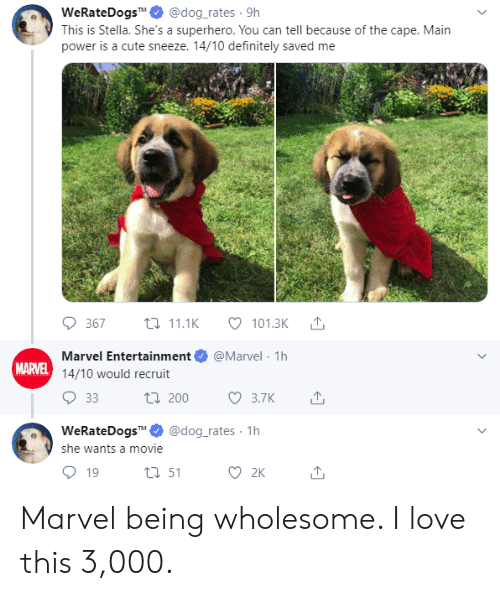 Cute, Definitely, and Love: @dog_rates 9h  WeRateDogsM  This is Stella. She's a superhero. You can tell because of the cape. Main  power is a cute sneeze. 14/10 definitely saved me  t11.1K  367  101.3K  @Marvel 1h  Marvel Entertainment  MARVEL 14/10 would recruit  ti 200  33  3.7К  @dog_rates 1h  WeRateDogsM  she wants a movie  2K  t51  19 Marvel being wholesome. I love this 3,000.