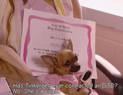 Tinkerbell, Dog, and Std: Dog Registration  Has Tinkerbell ever contracted an STD?  No. She's a virgi