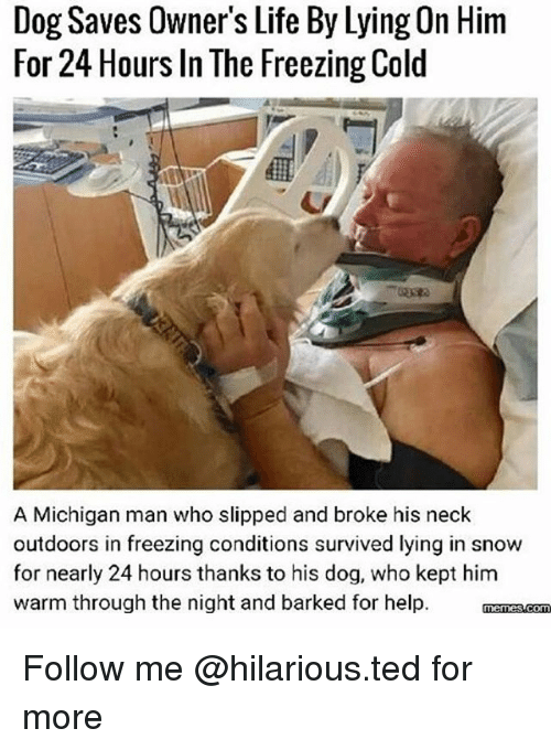 Funny, Life, and Ted: Dog Saves Owner's Life By Lying On Hirm  For 24 Hours In The Freezing Cold  A Michigan man who slipped and broke his neck  outdoors in freezing conditions survived lying in snow  for nearly 24 hours thanks to his dog, who kept him  warm through the night and barked for help. manss.com Follow me @hilarious.ted for more