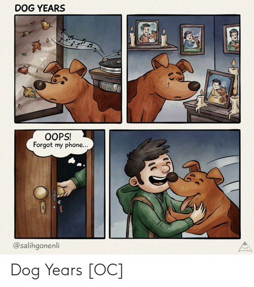 Phone, Dog, and Dog Years: DOG YEARS  OOPS!  Forgot my phone...  @salihgonenli Dog Years [OC]