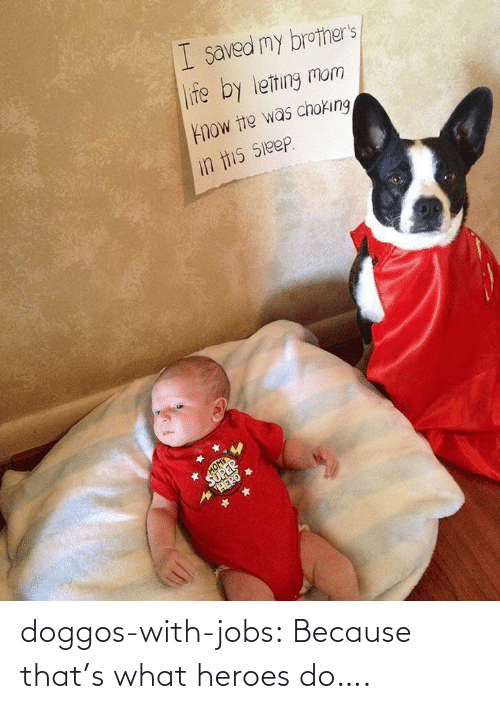 Jobs: doggos-with-jobs:  Because that's what heroes do….
