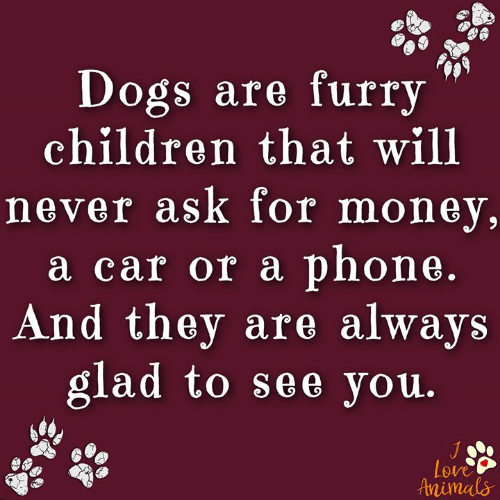 Animals, Children, and Dogs: Dogs are furry  children that will  never ask for money,  a car or a phone.  And they are always  glad to see you.  Love  Animals