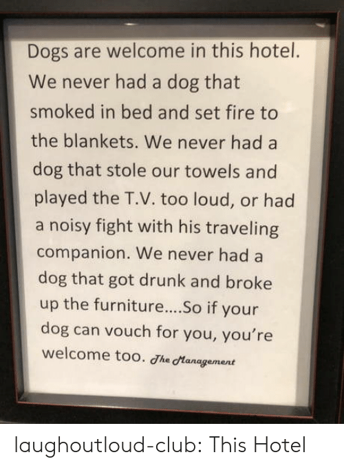 Club, Dogs, and Drunk: Dogs are welcome in this hotel.  We never had a dog that  smoked in bed and set fire to  the blankets. We never had a  dog that stole our towels and  played the T.V. too loud, or had  a noisy fight with his traveling  companion. We never had a  dog that got drunk and broke  up the furniture...So if your  dog can vouch for you, you're  welcome too. Jhe Management laughoutloud-club:  This Hotel