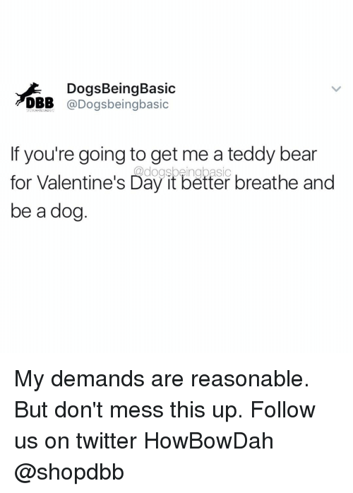 Howbowdah: DogsBeing Basic  DBB @Dogs being basic  If you're going to get me a teddy bear  for Valentine's Day it better breathe and  be a dog My demands are reasonable. But don't mess this up. Follow us on twitter HowBowDah @shopdbb