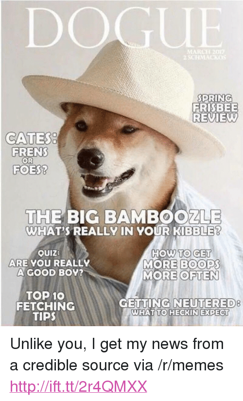 """Memes, News, and Good: DOGUE  PRING  FRISBEE  REVIEW  CATES  FRENS  OR  FOES?  THE BIG BAMBOOZLE  WHAT'S REALLY IN YOUR KİBBLER  OUIZ:  ARE YOU REALLY  A GOOD B0Y?  HOW TO GE  MORE BOOPS  MORE OFTEN  TOP 10  FETCHING  TIPS  GETTING NEUTERED  8  WHAT  TO HECKIN EXPECT <p>Unlike you, I get my news from a credible source via /r/memes <a href=""""http://ift.tt/2r4QMXX"""">http://ift.tt/2r4QMXX</a></p>"""