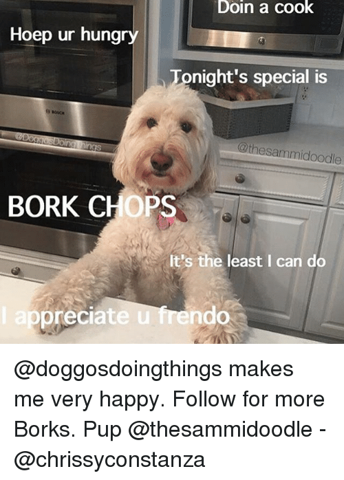 specials: Doin a cook  Hoep ur hungry  Tonight's special is  @thesammidoodle  BORK CHOPS  It's the least I can do  ep  preciate u frendo @doggosdoingthings makes me very happy. Follow for more Borks. Pup @thesammidoodle - @chrissyconstanza