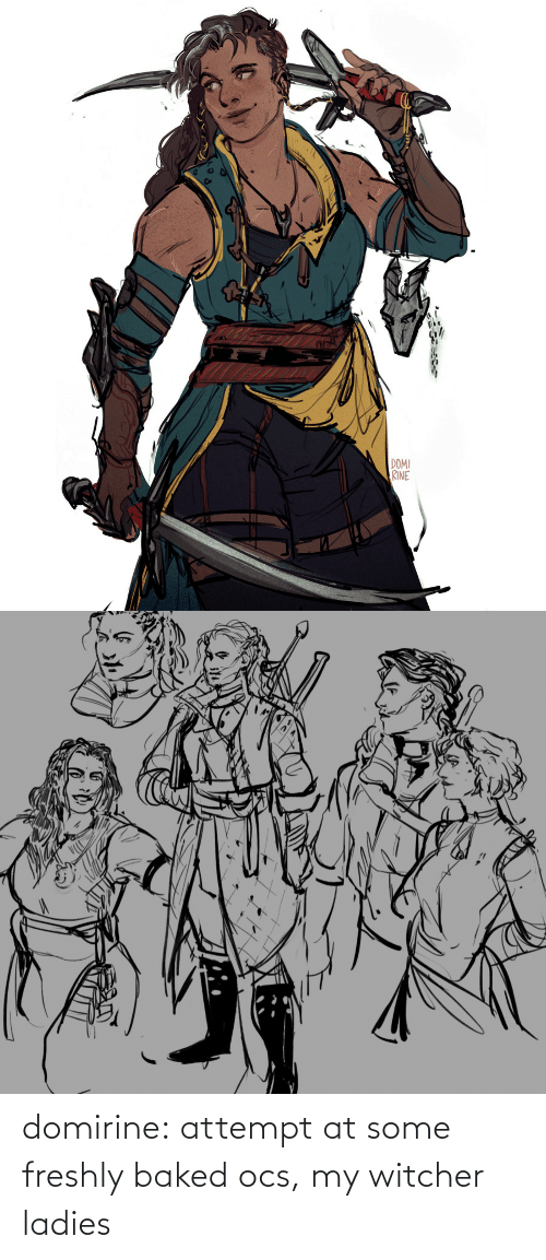 tumblr: domirine:  attempt at some freshly baked ocs, my witcher ladies