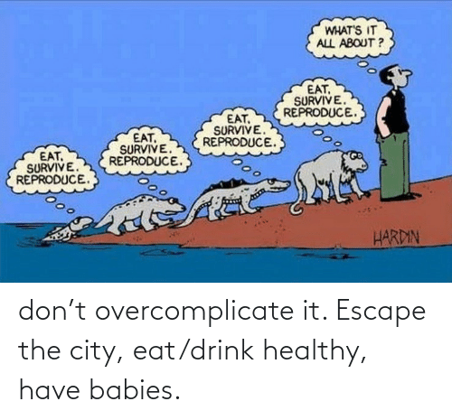 escape: don't overcomplicate it. Escape the city, eat/drink healthy, have babies.