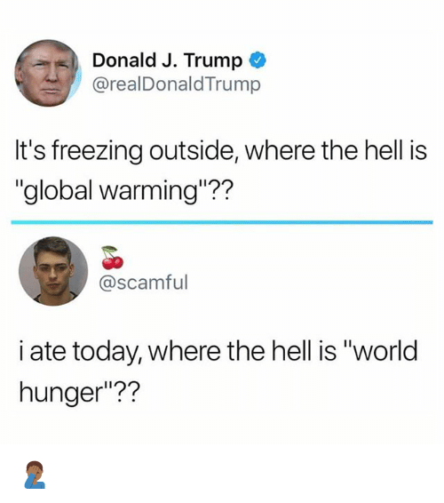 """Global Warming, Memes, and Today: Donald J. Trump *  @realDonaldTrump  It's freezing outside, where the hell is  """"global warming""""??  @scamful  i ate today, where the hell is """"world  hunger""""?? 🤦🏾♂️"""