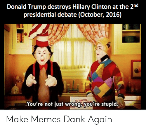 Presidential Debate: Donald Trump destroys Hillary Clinton at the 2nd  presidential debate (October, 2016)  HE AMATTING  You're not just wrong,you're stupid. Make Memes Dank Again