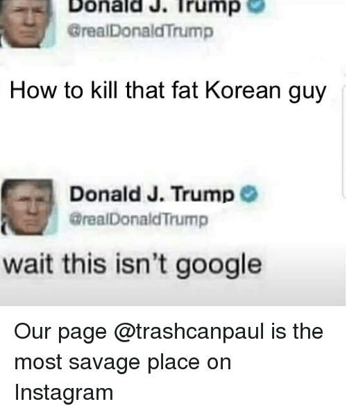 Donald Trump, Google, and Instagram: Donald.Trump  GrealDonaldTrump  How to kill that fat Korean guy  Donald J. Trump  @realDonaldTrump  wait this isn't google Our page @trashcanpaul is the most savage place on Instagram