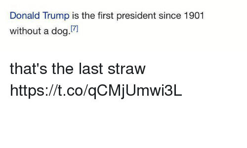 Donald Trump, Trump, and Girl Memes: Donald Trump is the first president since 1901  [7]  without a dog that's the last straw https://t.co/qCMjUmwi3L