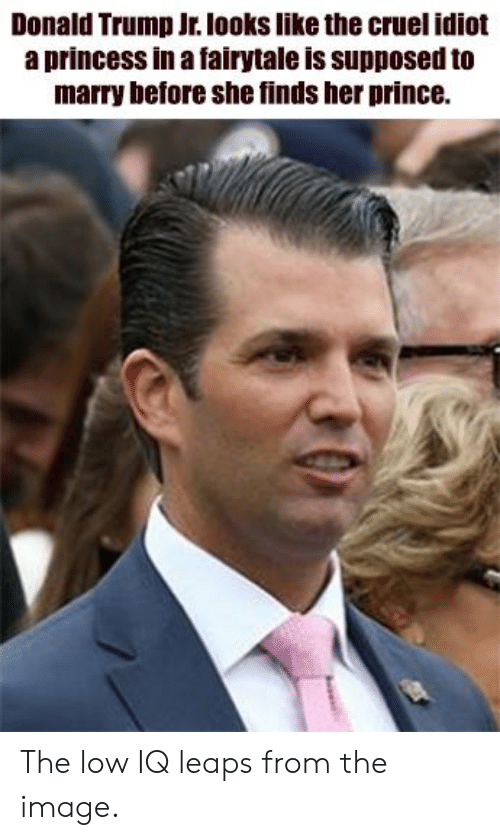 Donald Trump, Prince, and Image: Donald Trump Jr. looks like the cruel idiot  a princess in a fairytale is supposed to  marry before she finds her prince. The low IQ leaps from the image.