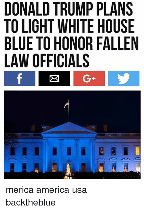 America, Donald Trump, and Memes: DONALD TRUMP PLANS  TO LIGHT WHITE HOUSE  BLUE TO HONOR FALLEN  LAW OFFICIALS merica america usa backtheblue